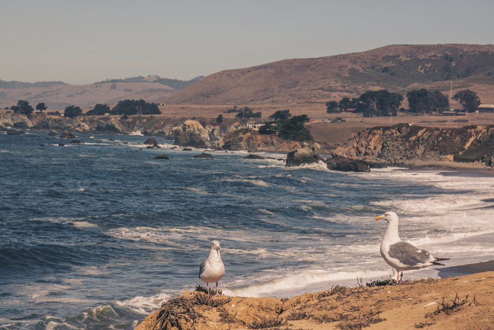 Bodega Bay Photography Spots - Portuguese Beach